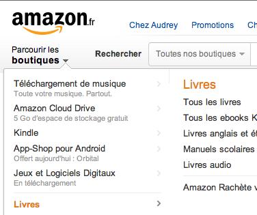 Amazon - Livres
